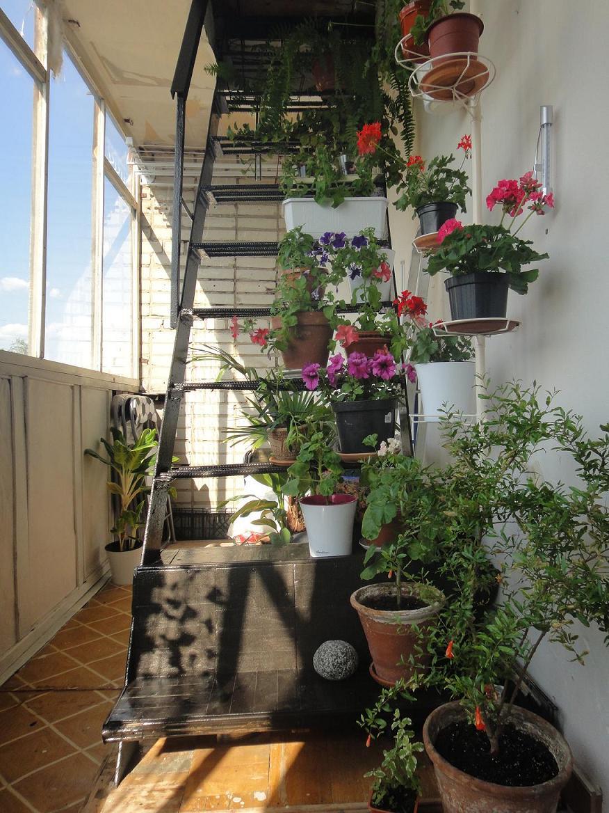 Декорированная лестница на балконе