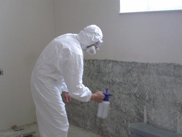 Обрабатываем стены противогрибковыми средствами