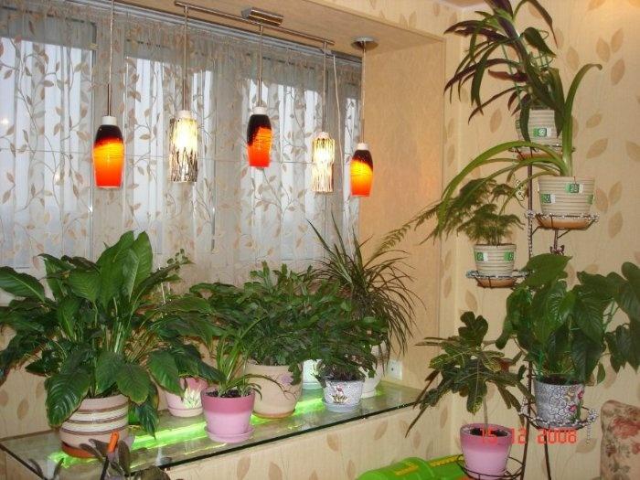 Освещение для цветов на присоединенной лоджии