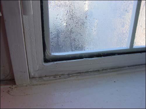 Наледь на окне